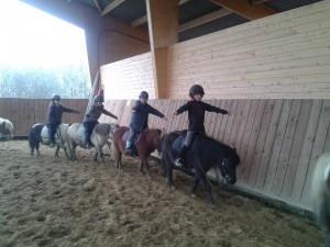 10959363 890011271049325 2694569800948811924 n 300x225 - Ecole d'équitation et poney club Ecurie Fantagaro -  -  -