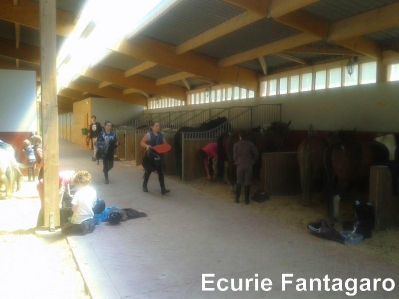 20150428 142939 800x600 - Installations Ecurie Fantagaro 64210 Ahetze -  -  -