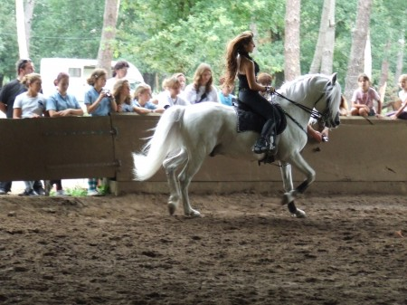 2293510304 - Enseignements & Hautes Voltiges, Écurie Fantagaro, 64 ahetze, école équitation, spectacle équestre, centre équestre -  -  -