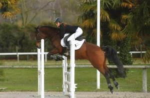 Écurie Fantagaro, 64 ahetze, école équitation, spectacle équestre, centre équestre