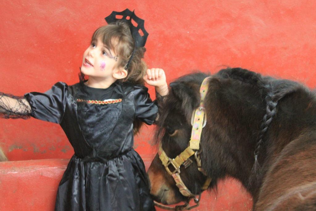 Écurie Fantagaro, Ecole Equitation, Spectacle Équestre, centre équestre, 64210 AHETZE, Pays Basque