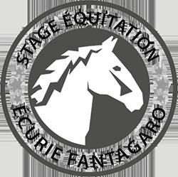 stage équitation aux écuries fantagaro
