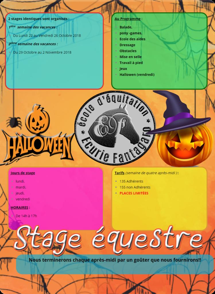 Stage(s) Équestre, durant les vacances scolaires de Toussaint 2018 aux Écuries Fantagaro Les écuries FANTAGARO vous propose 2 stages équestre au contenu pédagogique identique, durant les vacances de Toussaint 2018. THÉMATIQUE : HALLOWEN 1ière semaine des vacances : Du Lundi 22 au Vendredi 26 Octobre 2018 2ième semaine des vacances : Du 29 Octobre au 2 Novembre 2018 Jours de stage : lundi, mardi, jeudi, vendredi HORAIRES : De 14h à 17h chaque après-midi se termine par un goûter que nous fournissons!! Au Programme : Balade, pony -games, Ecole des aides Dressage Obstacles Mise en selle Travail à pied Jeux Hallowen (vendredi) Plus d'informations ? : N'hésitez pas nous demander et/ou à nous contacter : Stéphanie : 06.87.25.19.42 / duo.fantagaro@gmail.com